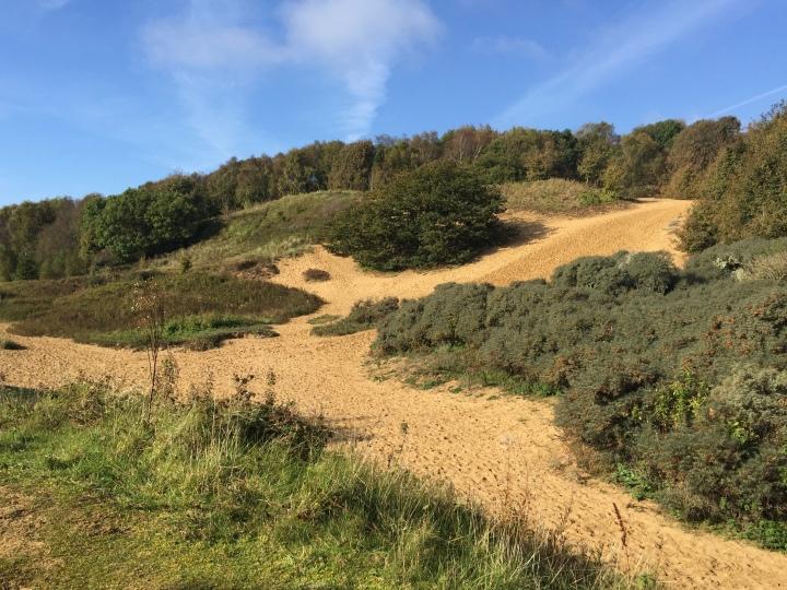 Merthyr Mawr Sand dunes 3