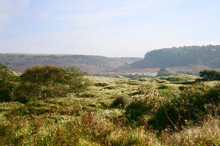 Merthyr Mawr Sand Dunes 1