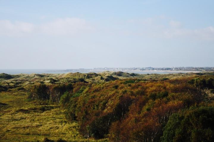 Merthyr Mawr Sand Dunes 4