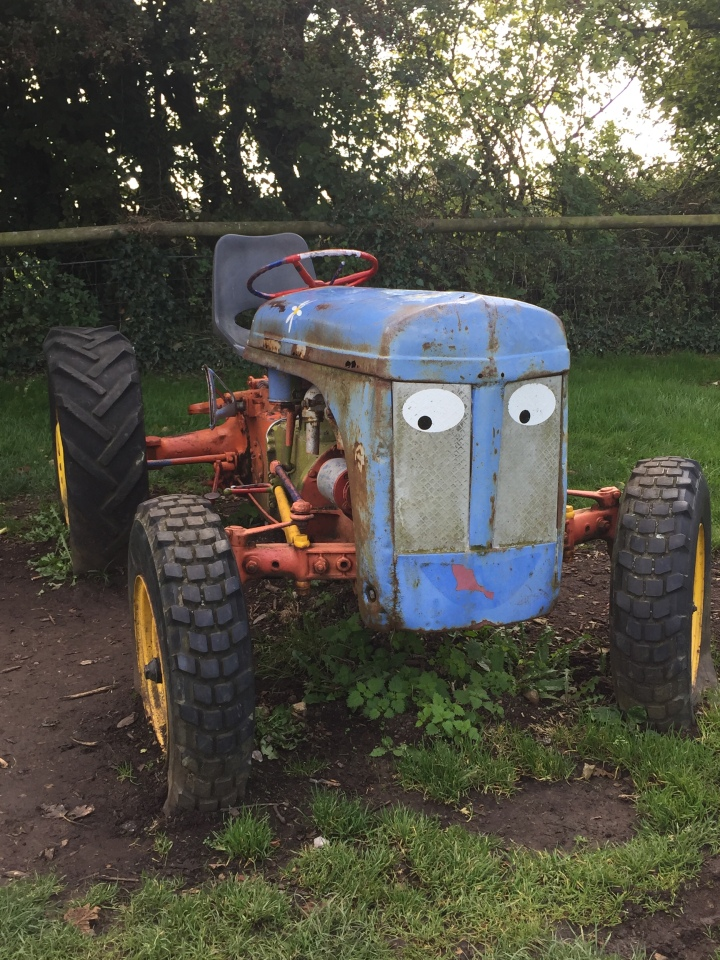 Amelia Trust Farm 7