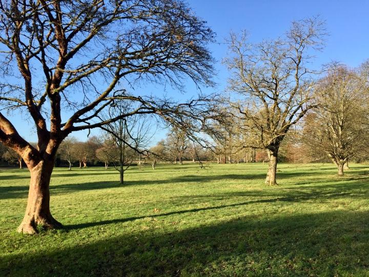 Dyffryn Gardens 24