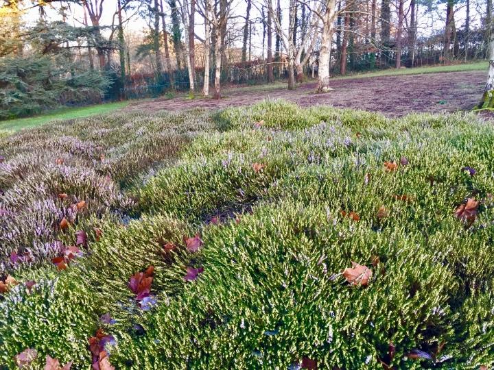 Dyffryn Gardens 23