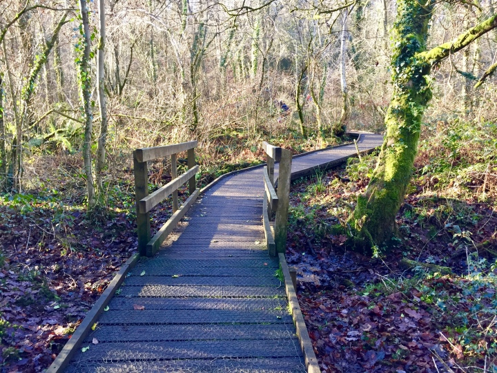 Bryngarw Country Park 5.jpeg
