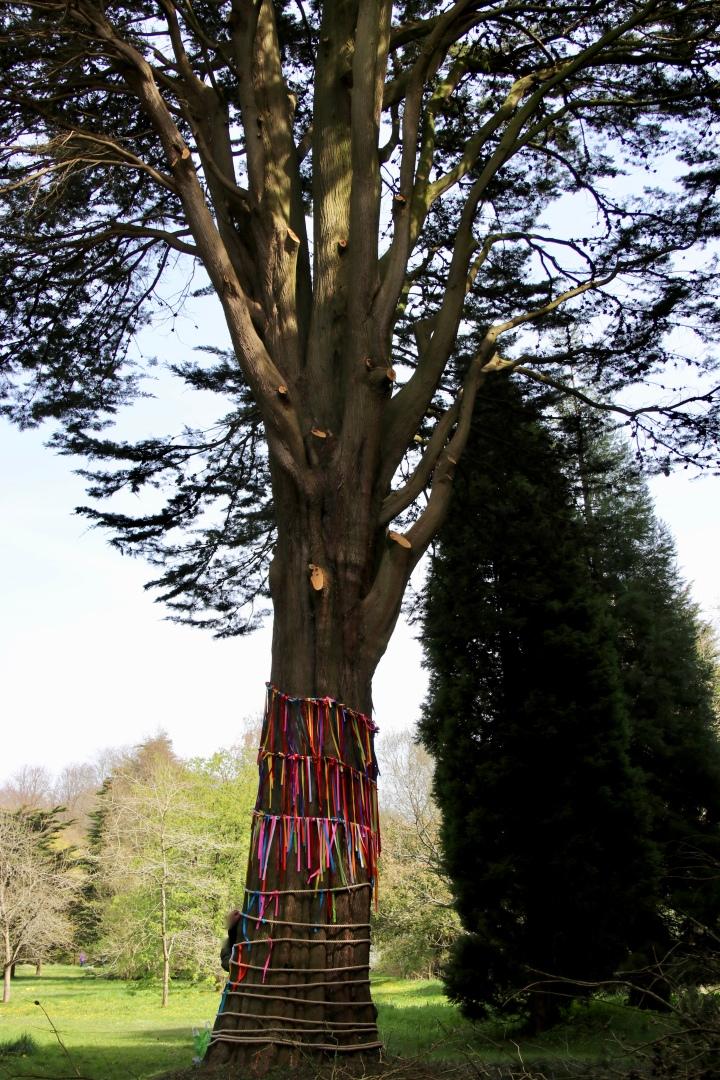Dyffryn Gardens 10.jpeg